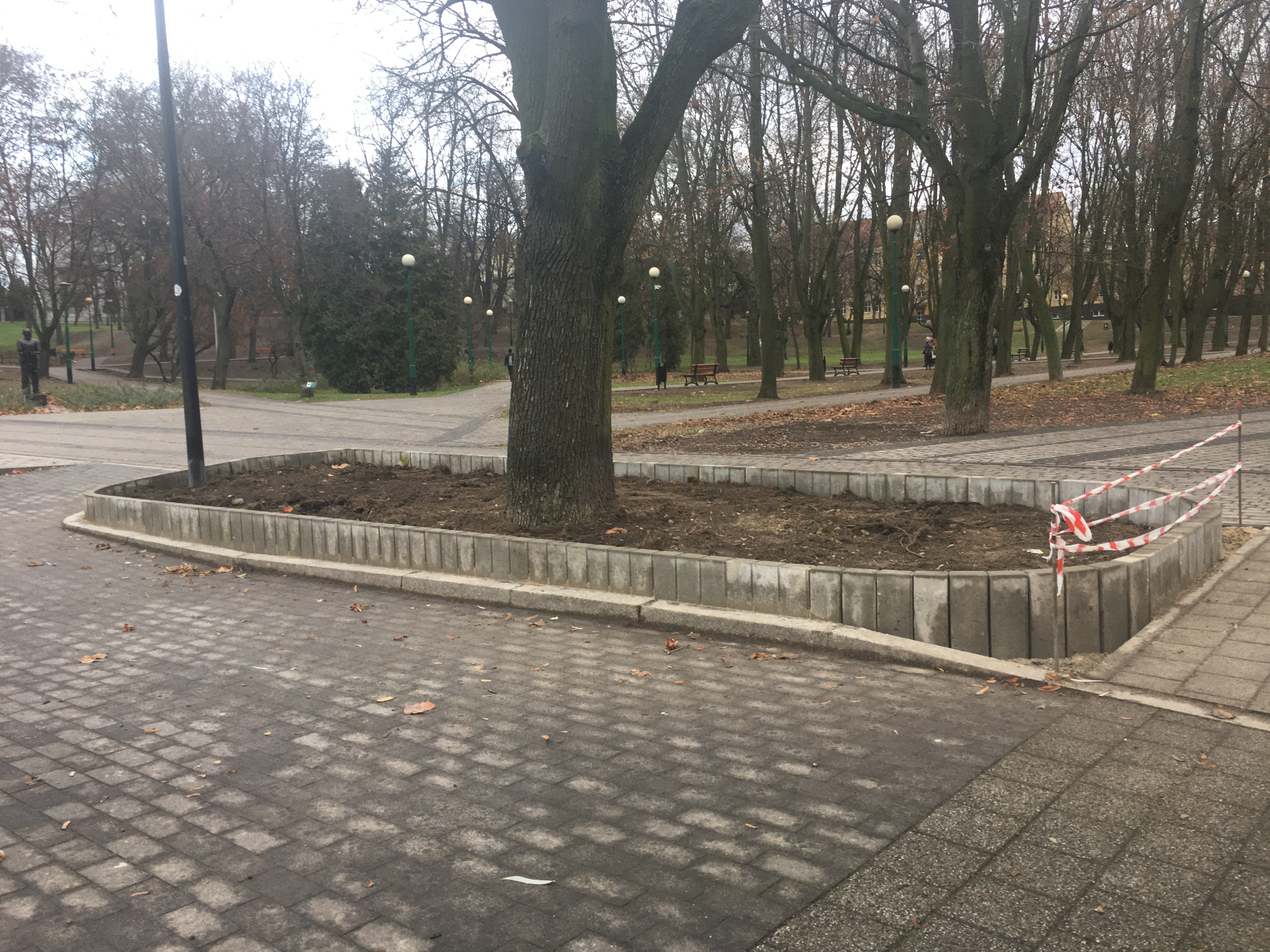 Palisada w Parku Traugutta, wiosną 2020 pojawią się w niej byliny cieniolubne.